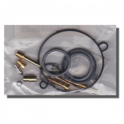 Carb Rebuild Kit TRX90 93-98