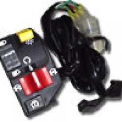 Combination Switch TRX400EX