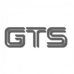 Ducati GTS decal