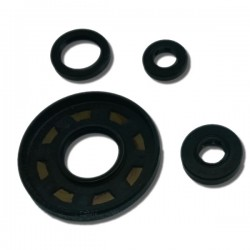 Oil Seal Set ATC250ES | ATC250SX