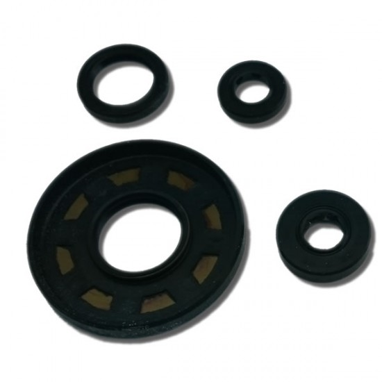 Oil Seal Set ATC250ES | ATC250SX