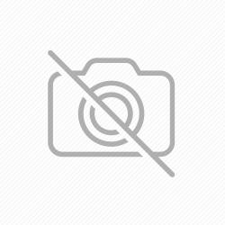 Rear Brake Shoe Set ATC250ES | ATC250SX